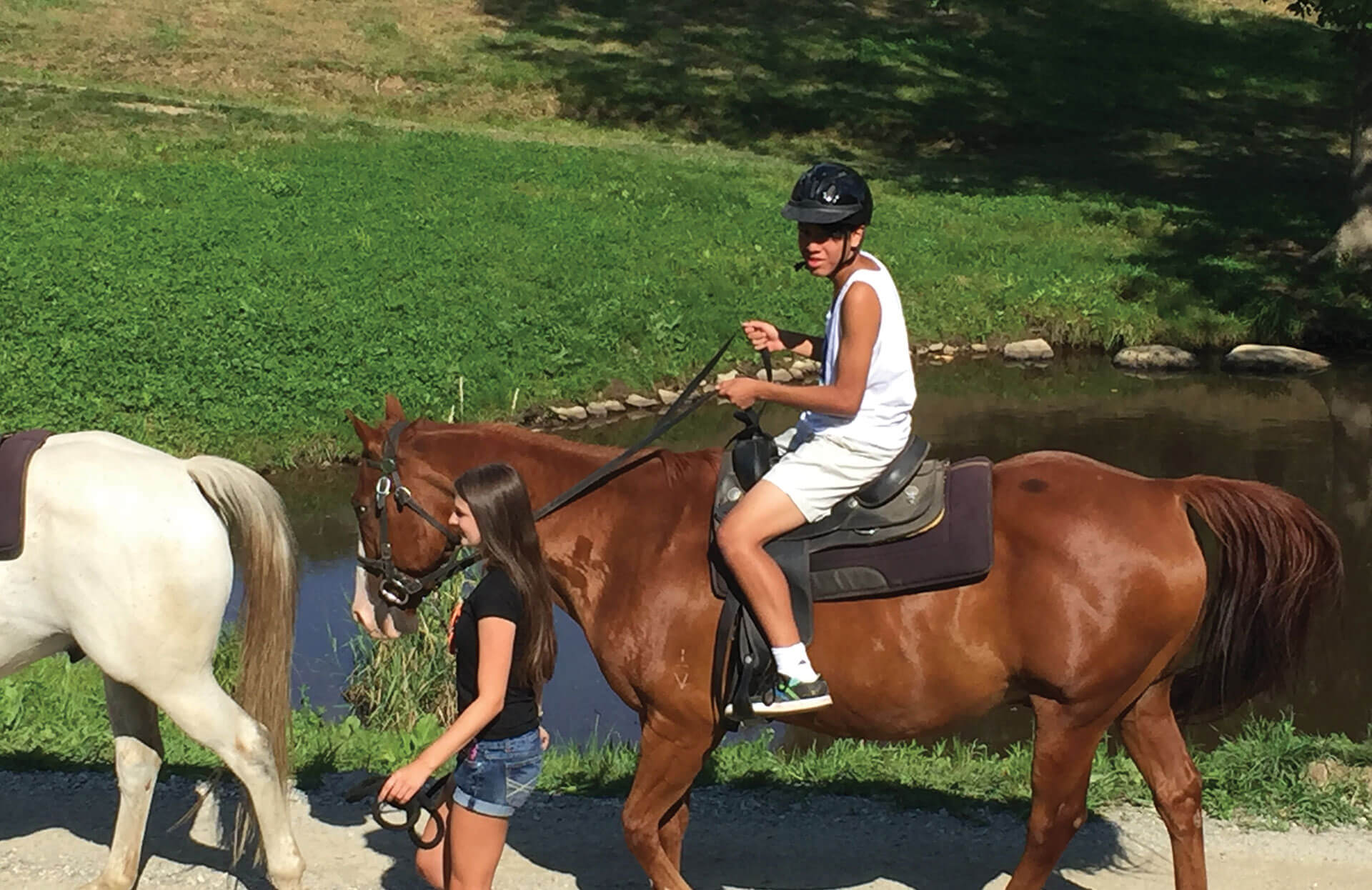 Horse Ride and Pony ride for adults and kids